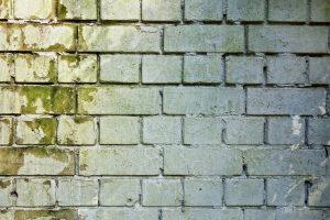 brick-wall-3194516_1280